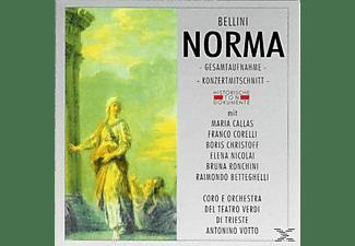 Coro E Orch.Del Teatro Verdi D - Norma  - (CD)