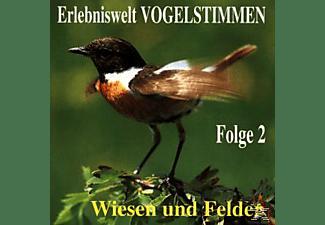 Vogelstimmen - Erlebniswelt Vogelstimmen Vol.2  - (CD)