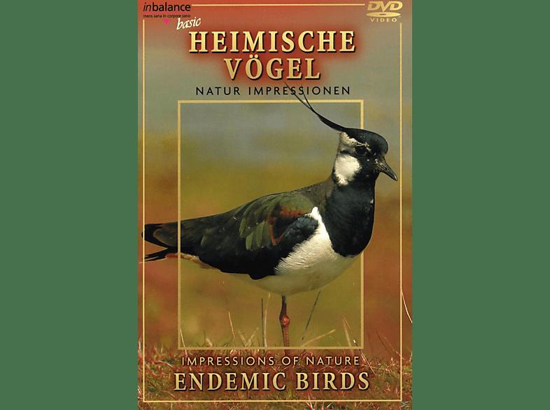 Impressionen heimischer Vögel [DVD]