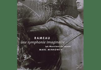 Marc Minkowski - Une Symphonie Imaginaire (180g)  - (Vinyl)