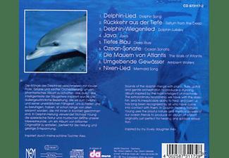Richard Jung - Delphin-Heilung  - (CD)