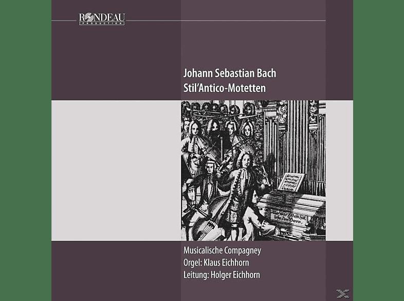 Musicalische Compan - STIL ANTICO MOTETS [CD]