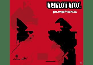 Benassi Bros. - Pumphonia  - (Vinyl)