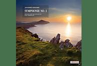 Johannes Brahms - Sinfonie 1 C-Moll Op.68 [Vinyl]