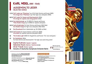 Sophie Klußmann, Oliver Triendl, VARIOUS - Ausgewählte Lieder  - (CD)
