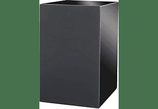 PRO-JECT Speaker Box 5 Kompakt-Monitorlautsprecher (Paar), schwarz hochglanz