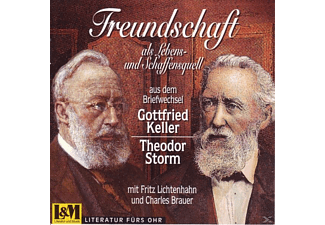 Gottfried & Theodor Storm Keller - Briefwechsel  - (CD)