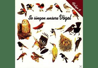 Vogelstimmen - So Singen Unsere Vögel 6  - (CD)