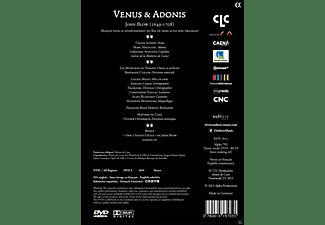 Celine scheen, Marc Mauillon - Venus & Adonis  - (DVD)