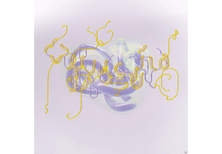 Björk - Family (Bloom's North Remix)  - (Vinyl)