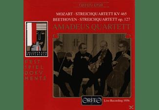 Amadeus Quartett - Streichquartette Kv 465/Op.127  - (CD)