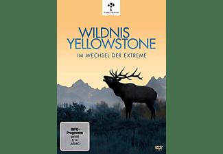 Wildnis Yellowstone-im Wechsel der Extreme DVD