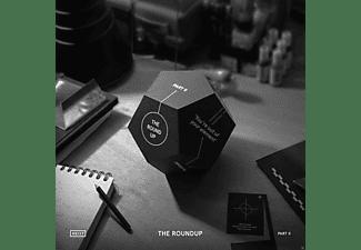 VARIOUS - Roundup Part 2  - (Vinyl)
