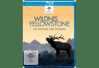Wildnis Yellowstone-im Wechsel der Extreme Blu-ray