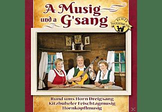 VARIOUS - A Musig Und A G'sang  - (CD)