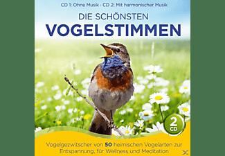 Naturklang - Die schönsten Vogelstimmen-Vogelgezwitscher v 50  - (CD)