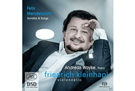 Friechrich Kleinhapl, Andreas Woyke - Sonatas & Songs [SACD Hybrid]