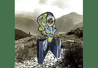 Richard Dawson - The Glass Trunk  - (Vinyl)