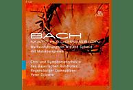 SCHMID/DIJKSTRA/BR/REGENSBURGER DOMSP. - Matthäus-Passion Werkeinführung [CD]