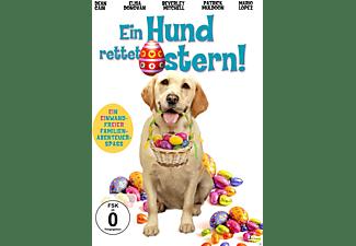 Ein Hund Rettet Ostern DVD