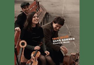Trio Image, Hans Sommer, VARIOUS - Weltpremieren  - (CD)