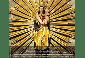 Mechthild Kiendl, Anne Dufresne, Norbert Duchtel - Dich Maria Heut Zu Preisen  - (CD)