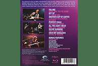 Paul Carrack / Mike & The Mechanics - Live At Shepherds Bush London [Blu-ray]