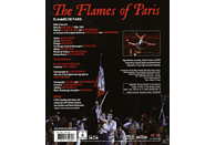 Bolshoi Ballet/Osipova/Vasiliev - The Flames Of Paris [Blu-ray]