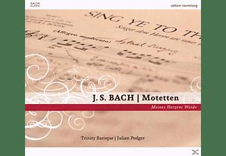 Trinity Baroque - Motetten-Meines Herzens Weide  - (CD)