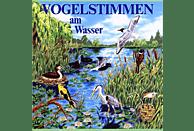 Schulze,Andreas Dr./Werle,Alfred - Vogelstimmen Am Wasser, Ed.3 [CD]