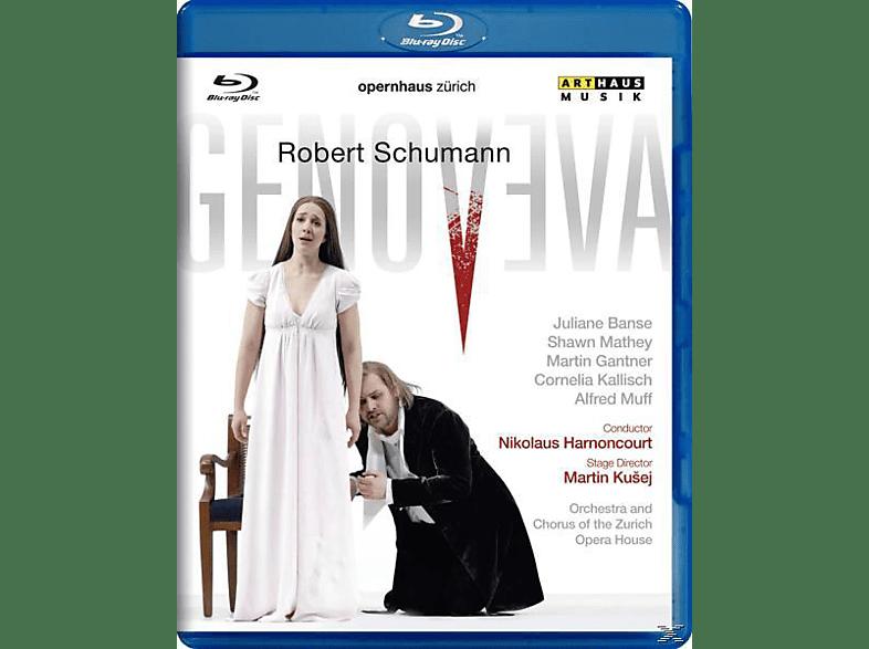 BANSE JULIANE, MATHEY SHAWN, GANTNE, Harnoncourt/Banse/Mathey - Genoveva [Blu-ray]