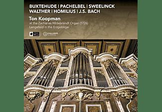 Ton Koopman - Ton Koopman At The Zacharias Hildebrandt Organ  - (CD)
