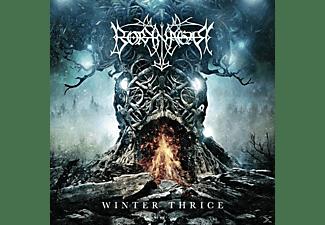 Borknagar - Winter Thrice  - (CD)