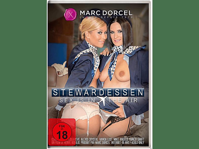 Stewardessen - Sex Is in the air [DVD]