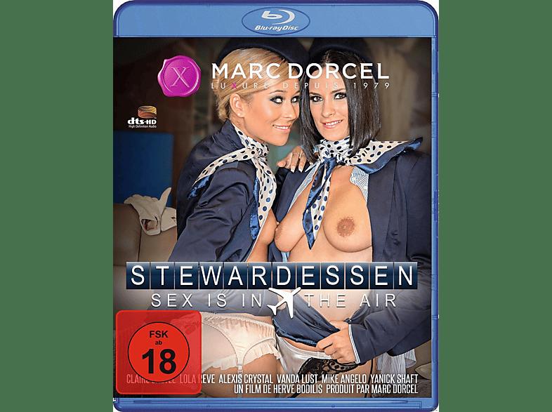 Stewardessen - Sex Is in the air [Blu-ray]
