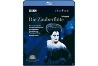 VARIOUS - Die Zauberflöte [Blu-ray]