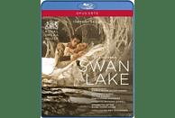 Ovsyanikov/Royal Ballet - Schwanensee [Blu-ray]