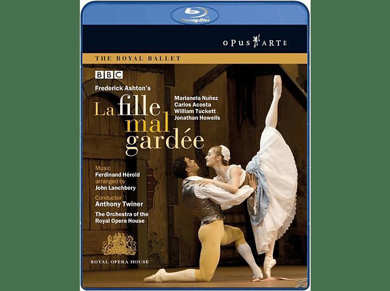 Nunez, Anthony/royal Opera House Twiner, Twiner/Royal Opera House - La Fille Mal Gardee [Blu-ray]