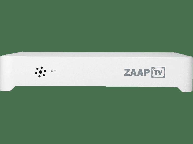 ZAAPTV ZaapTV™ HD509NII HD IPTV Mediaplayer für Arabische, Türkische, Kurdische und Internationale Sender IPTV Streaming-Client (Silber)