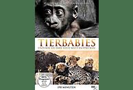 Tierbabies und Wie Sie Ihre Neue Welt Entdecken [DVD]