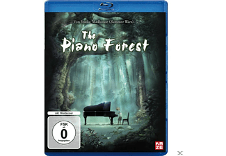 Piano Forest - (Blu-ray)
