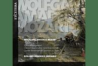 Roeland Hendrikx Ensemble - Trio & Quartets For Clarinet [CD]
