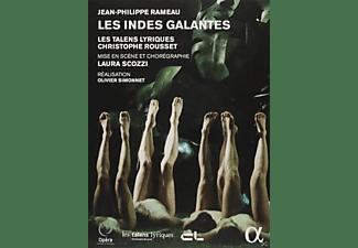 VARIOUS, Les Talens Lyriques, Choeur de l'Opéra National de Bordeaux - Les Indes Galantes  - (DVD)