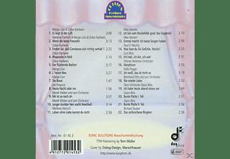 VARIOUS - Es Liegt In Der Luft  - (CD)