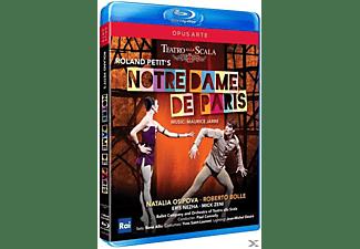 Corpo Di Ballo Ed Orch Del Teatro S - Notre-Dame De Paris  - (Blu-ray)