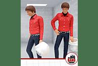 The Big Bang Theory PVC Figur Howard Wolowitz