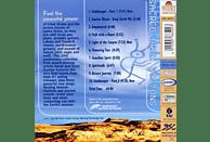 Steve - Sacred Drum Visions [CD]
