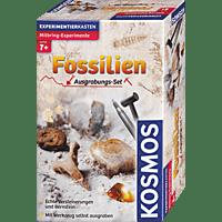 KOSMOS Ausgrabungsset Fossilien Mitbringexperiment