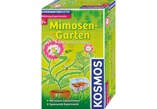 KOSMOS Mimosen-Garten Mitbringexperiment
