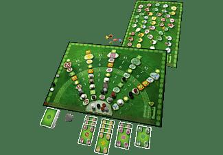 KOSMOS Keltis (inkl. Erweiterung) Familienspiel